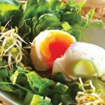 Pochiertes Ei mit Salat